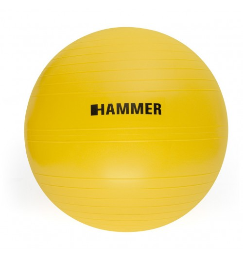 Pelota Gym Ball Finnlo 55cm